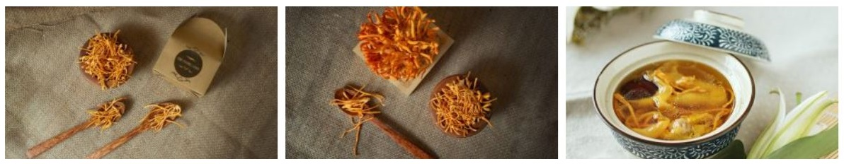 cách sử dụng đông trùng hạ thảo tươi