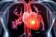 Tim, gan và phổi kị gì ?