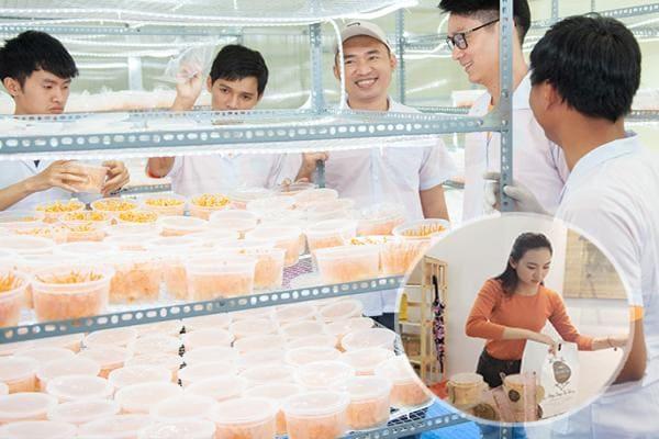 Hệ thống đại lý phân phối đông trùng hạ thảo|kimcuongvang.com