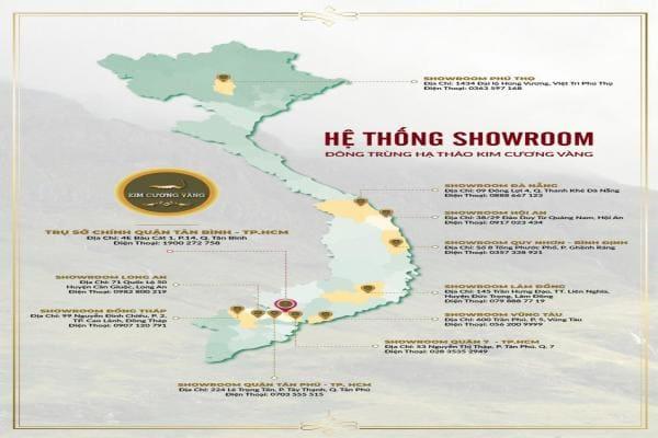 Đông Trùng Hạ Thảo là gì| Công dụng của Đông Trùng Hạ Thảo