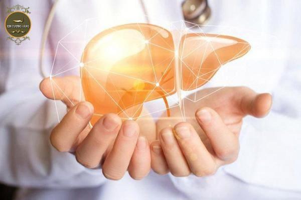 Mùi bất thường trên cơ thể cảnh báo gan bị tổn thương|đông trùng hạ thảo